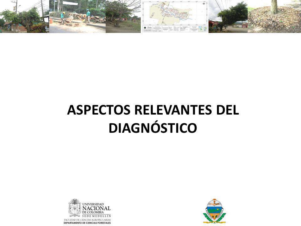 ASPECTOS RELEVANTES DEL DIAGNÓSTICO