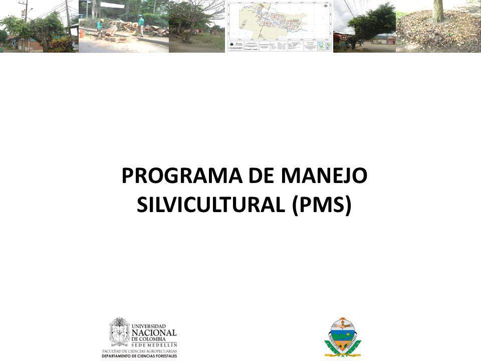 PROGRAMA DE MANEJO SILVICULTURAL (PMS)