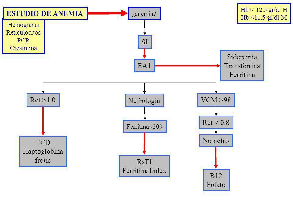 ESTUDIO DE ANEMIA SI Sideremia Transferrina Ferritina EA1 Ret >1.0