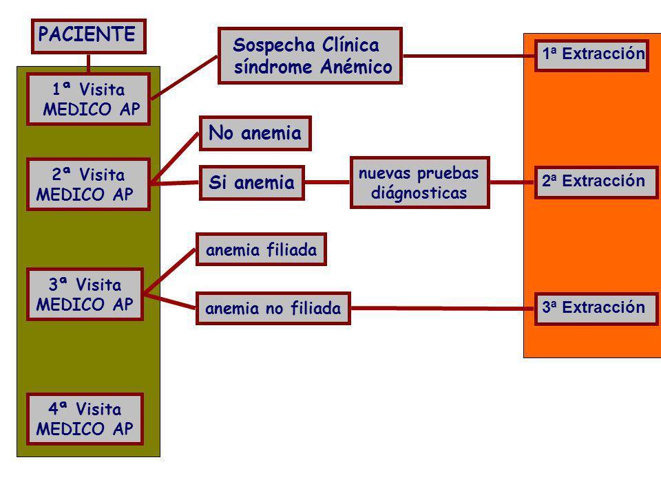 Sospecha Clínica síndrome Anémico No anemia Si anemia