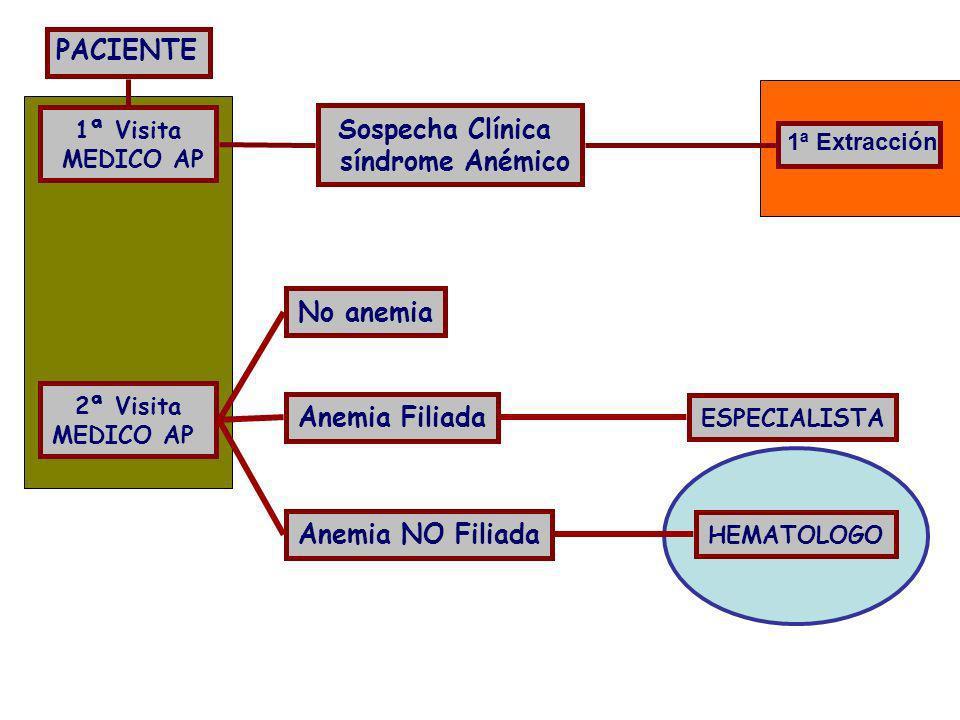 PACIENTE Sospecha Clínica síndrome Anémico No anemia Anemia Filiada