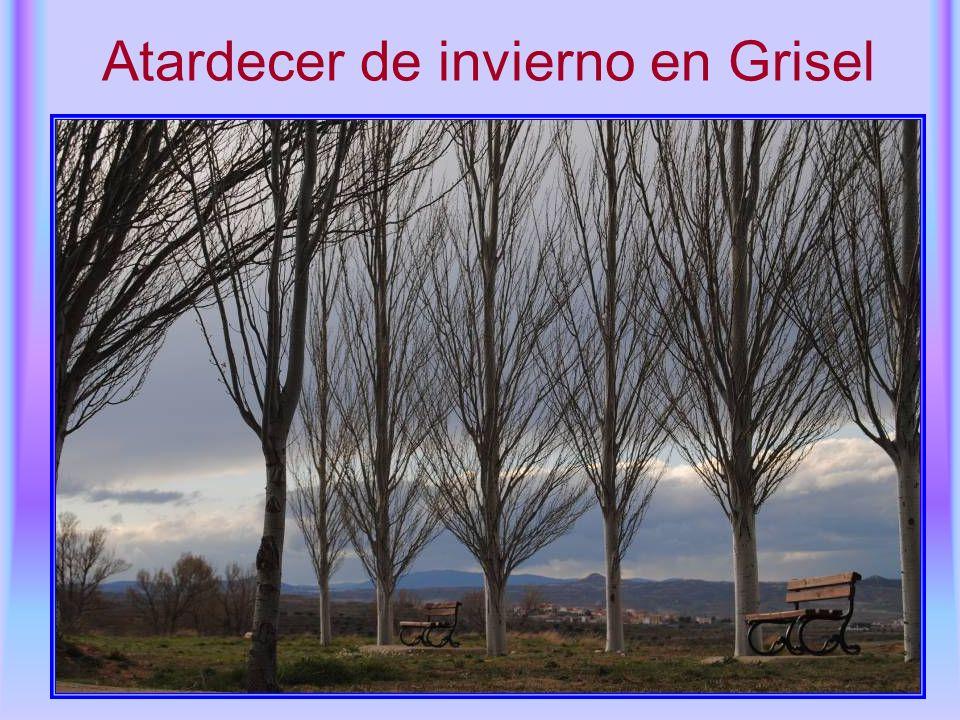 Atardecer de invierno en Grisel
