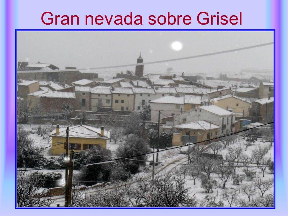 Gran nevada sobre Grisel