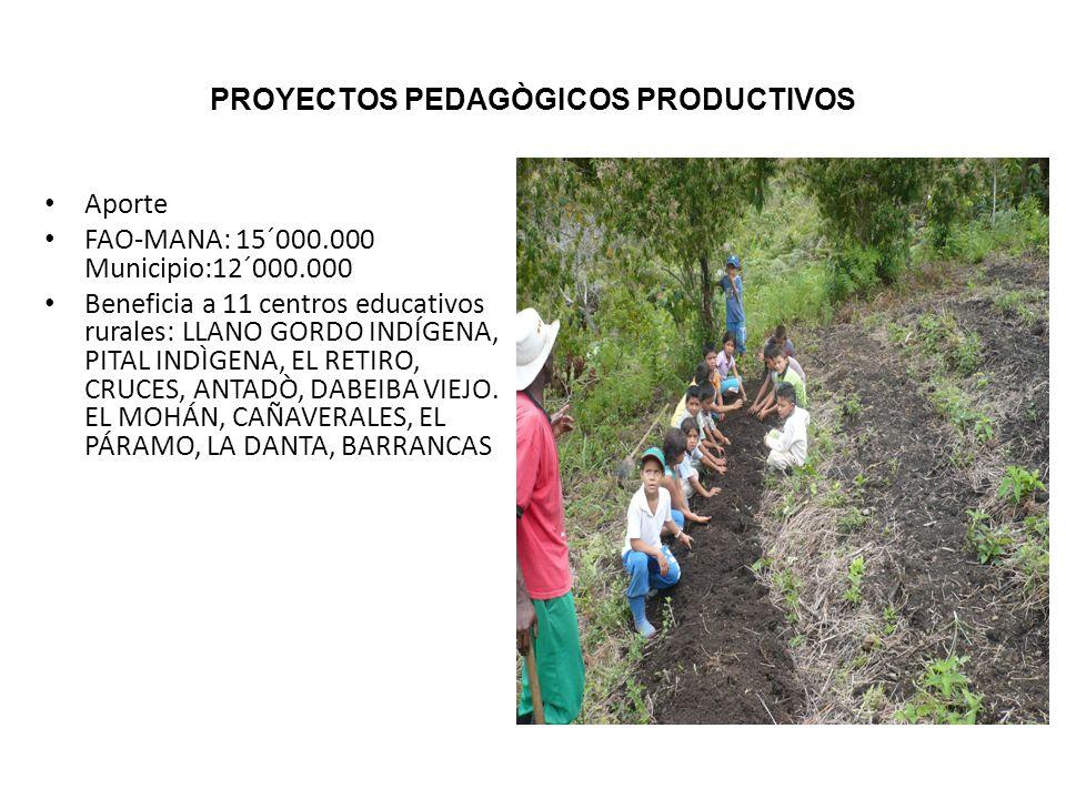 PROYECTOS PEDAGÒGICOS PRODUCTIVOS