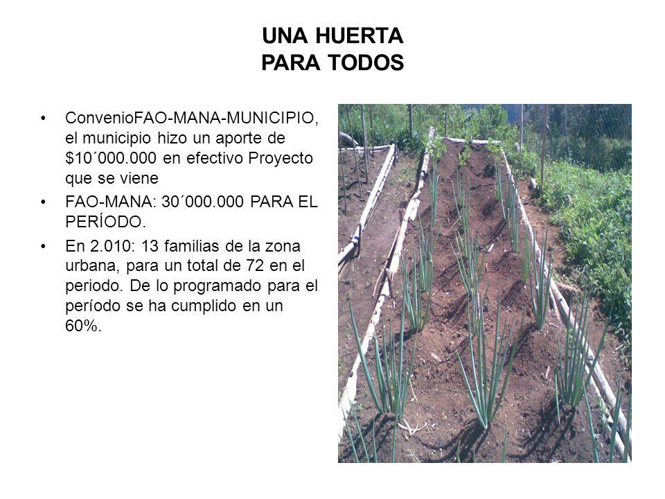 UNA HUERTA PARA TODOS ConvenioFAO-MANA-MUNICIPIO, el municipio hizo un aporte de $10´000.000 en efectivo Proyecto que se viene.