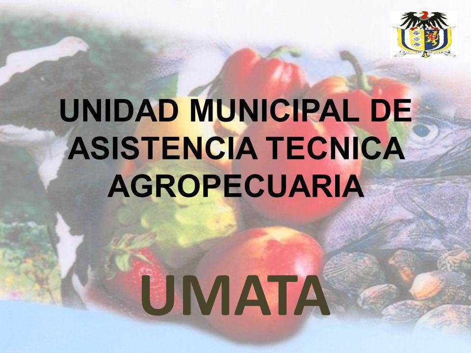 UNIDAD MUNICIPAL DE ASISTENCIA TECNICA AGROPECUARIA