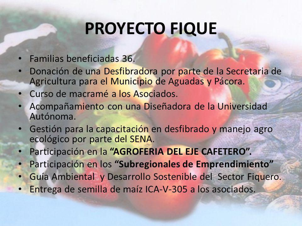 PROYECTO FIQUE Familias beneficiadas 36.