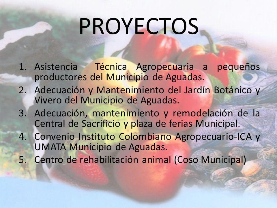 PROYECTOS Asistencia Técnica Agropecuaria a pequeños productores del Municipio de Aguadas.