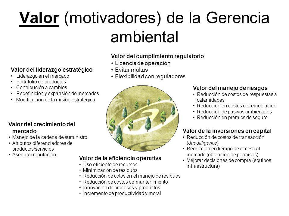 Valor (motivadores) de la Gerencia ambiental