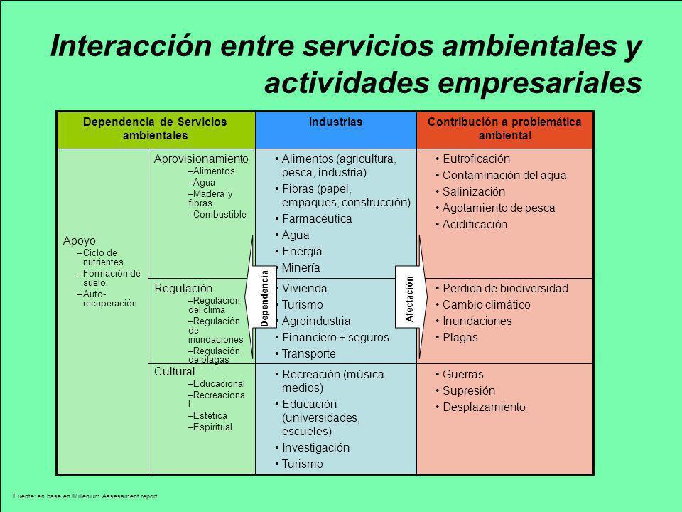 Interacción entre servicios ambientales y actividades empresariales