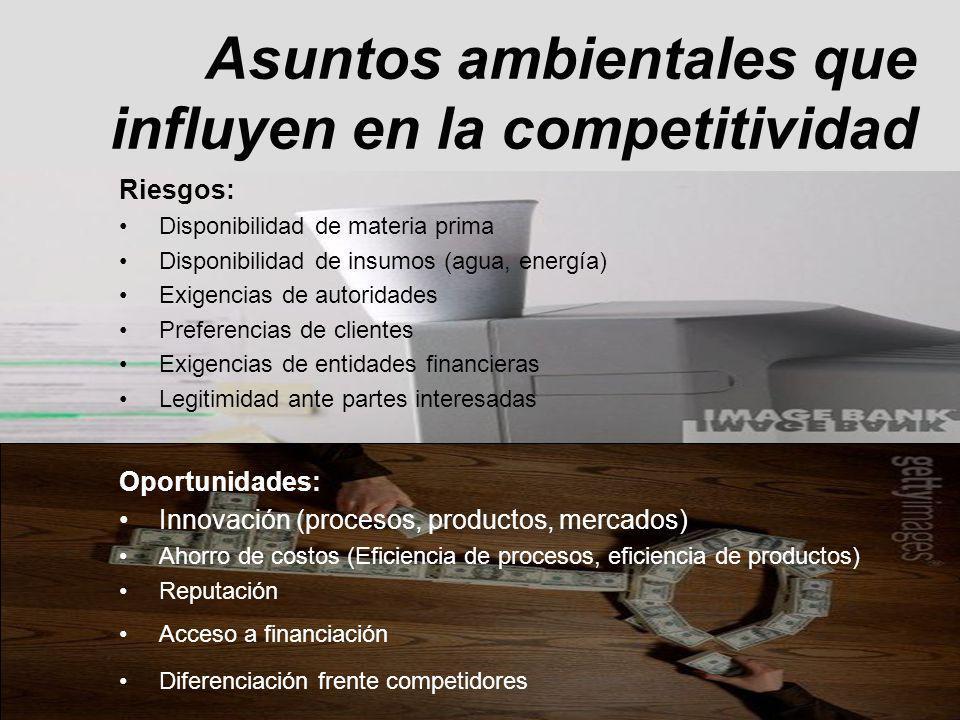 Asuntos ambientales que influyen en la competitividad