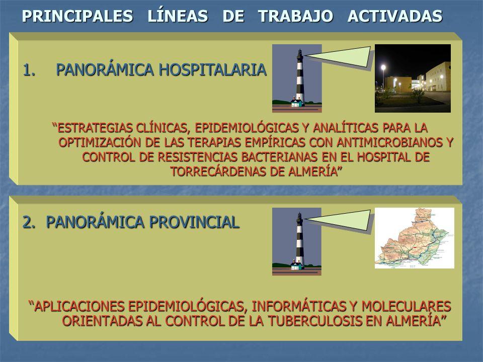 PRINCIPALES LÍNEAS DE TRABAJO ACTIVADAS