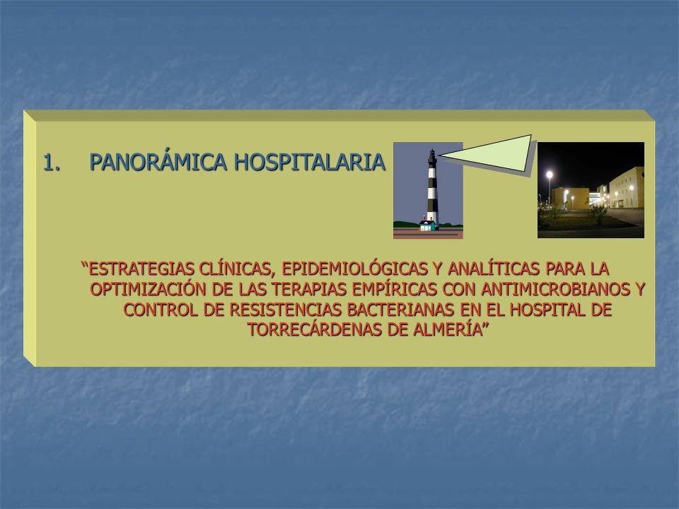 1. PANORÁMICA HOSPITALARIA