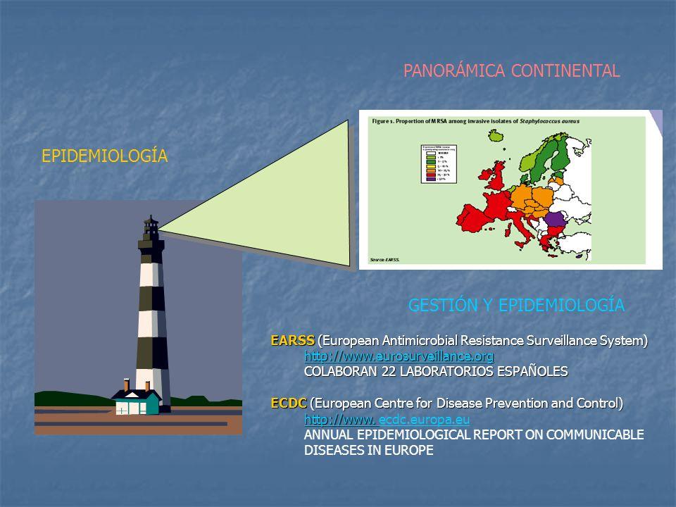 PANORÁMICA CONTINENTAL