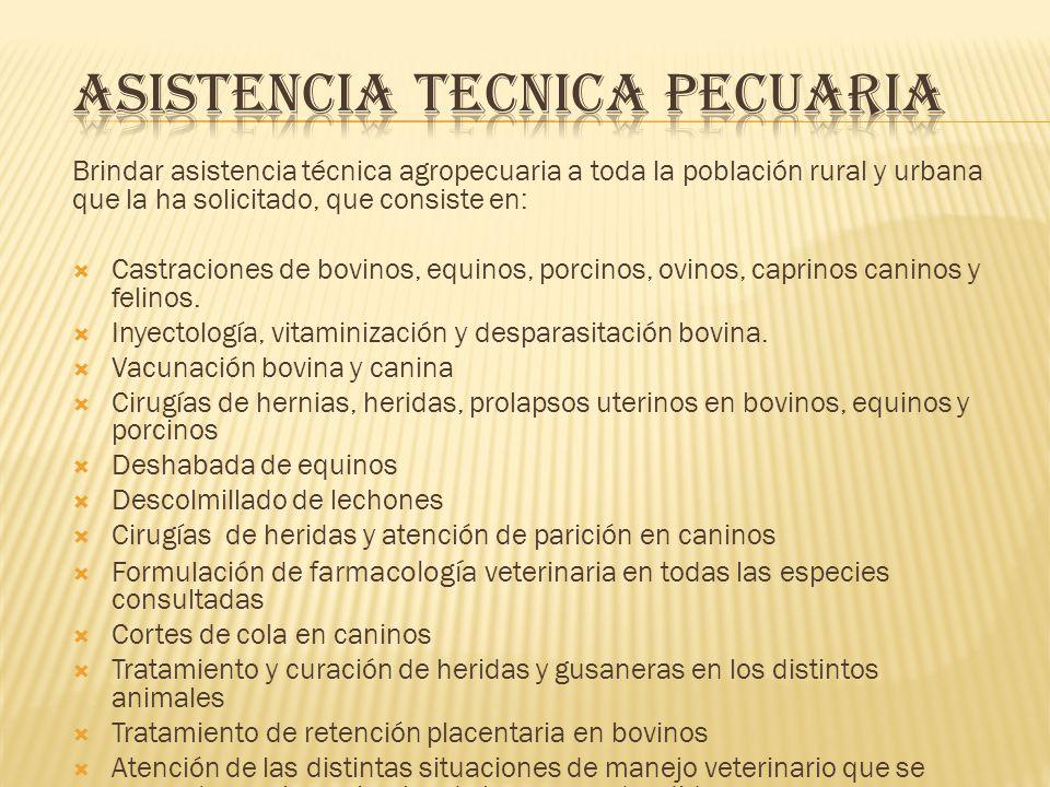ASISTENCIA TECNICA PECUARIA