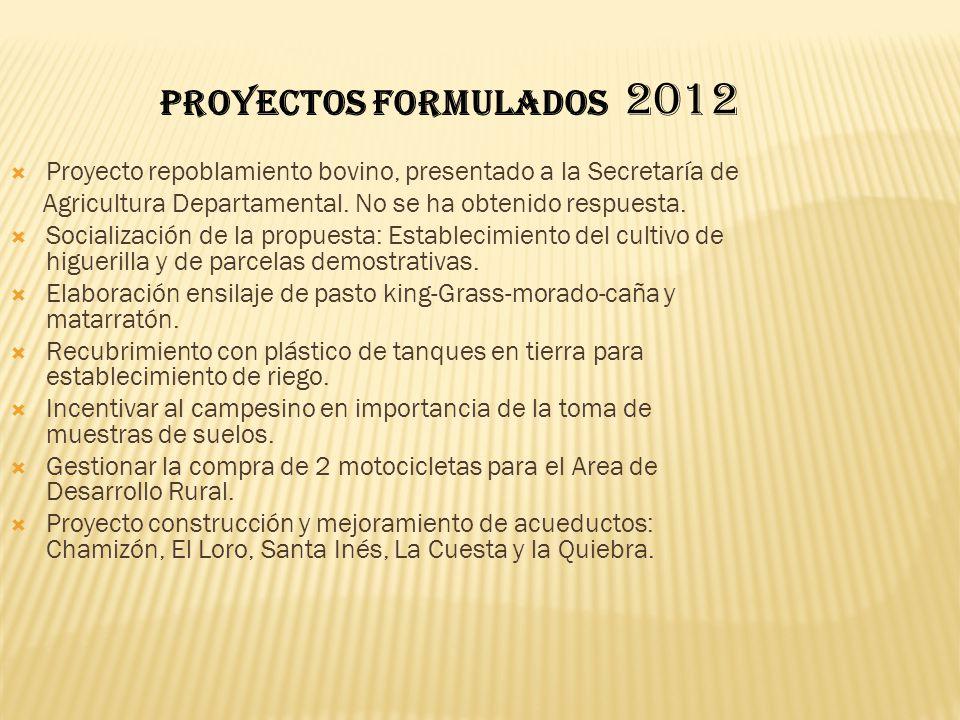 PROYECTOS FORMULADOS 2012 Proyecto repoblamiento bovino, presentado a la Secretaría de. Agricultura Departamental. No se ha obtenido respuesta.