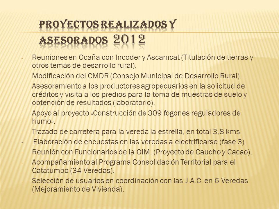 PROYECTOS REALIZADOS Y ASESORADOS 2012