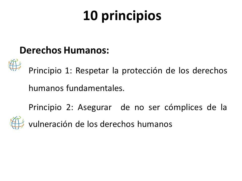 10 principios Derechos Humanos: