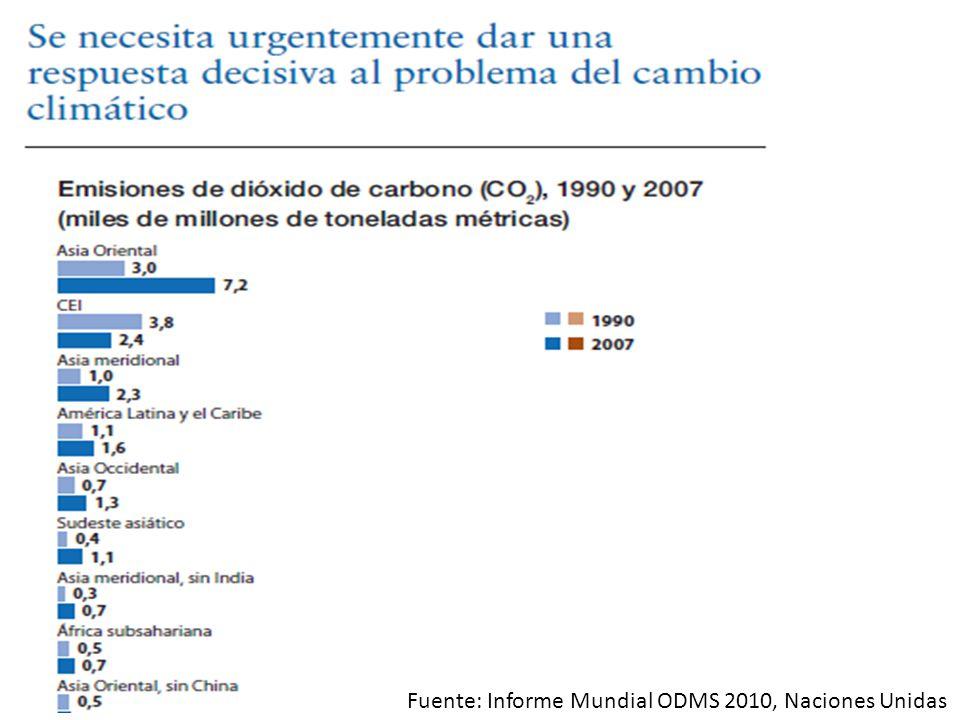 Fuente: Informe Mundial ODMS 2010, Naciones Unidas
