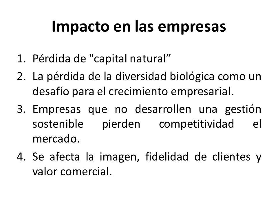 Impacto en las empresas
