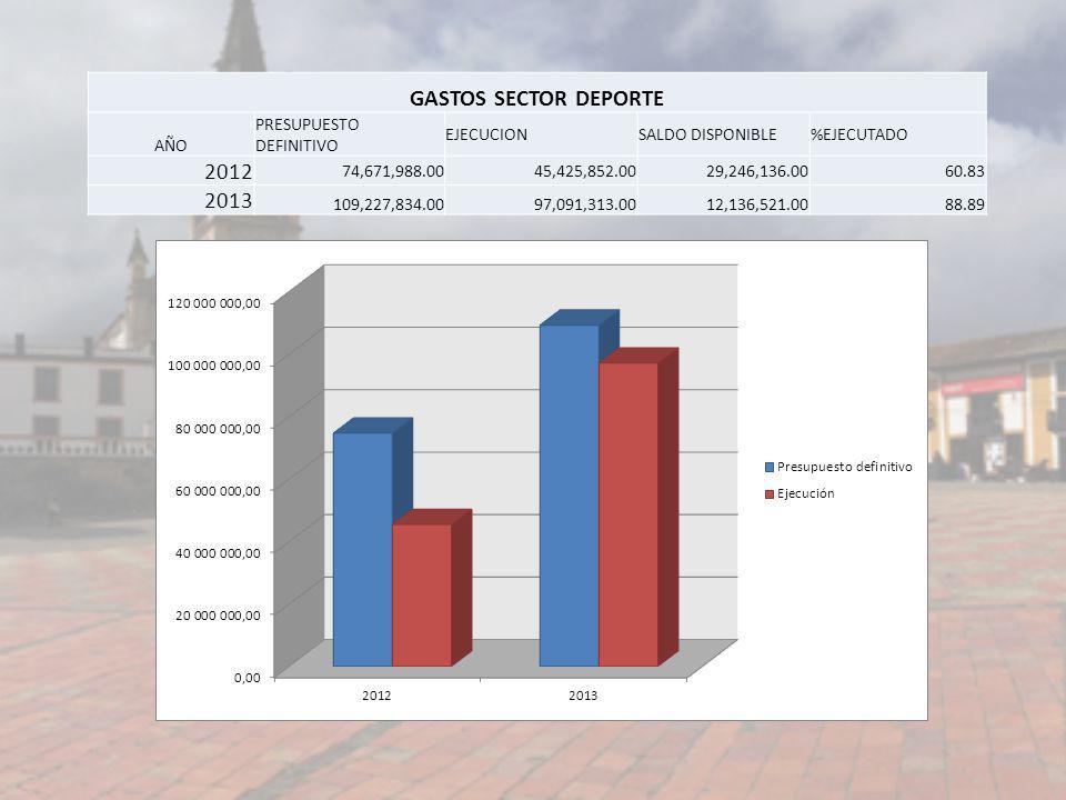GASTOS SECTOR DEPORTE 2012 2013 AÑO PRESUPUESTO DEFINITIVO EJECUCION
