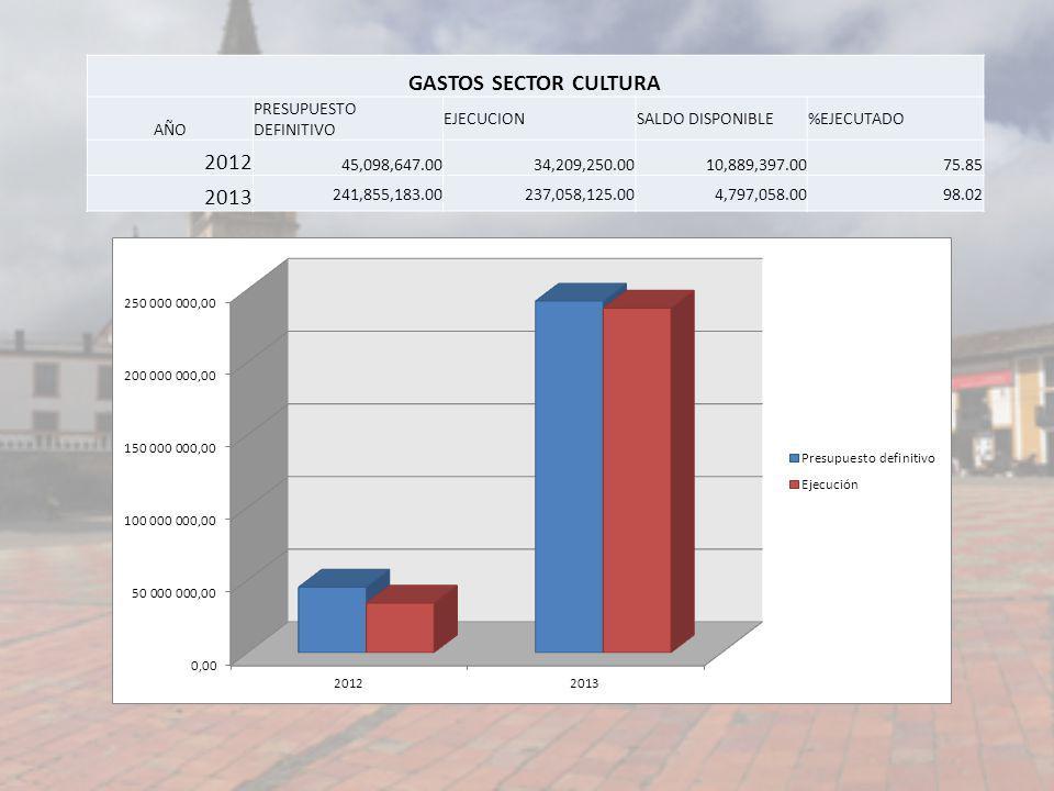 GASTOS SECTOR CULTURA 2012 2013 AÑO PRESUPUESTO DEFINITIVO EJECUCION