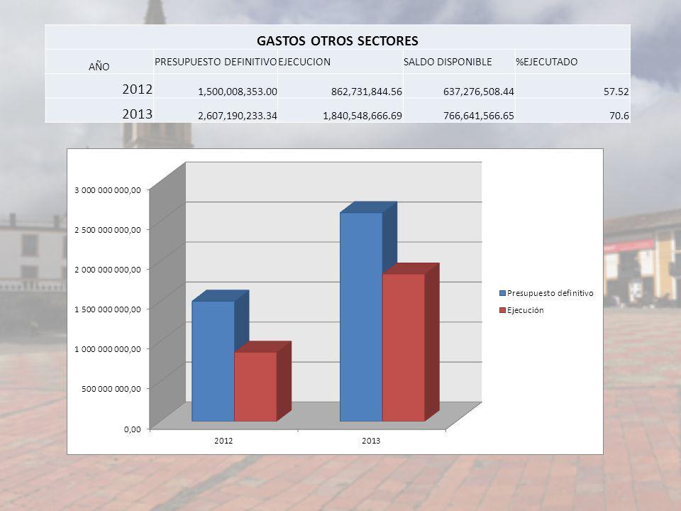 GASTOS OTROS SECTORES 2012 2013 AÑO PRESUPUESTO DEFINITIVO EJECUCION