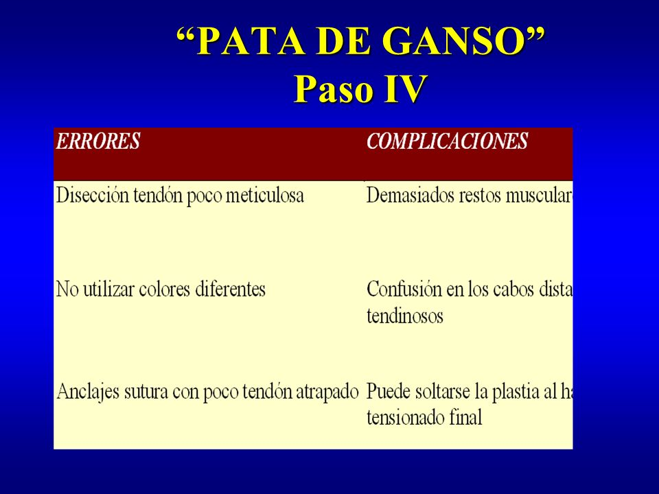 PATA DE GANSO Paso IV