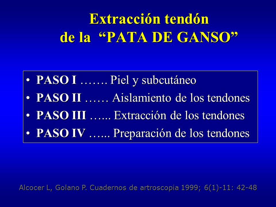 Extracción tendón de la PATA DE GANSO