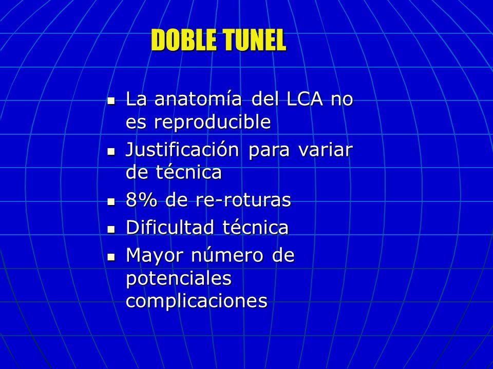 DOBLE TUNEL La anatomía del LCA no es reproducible