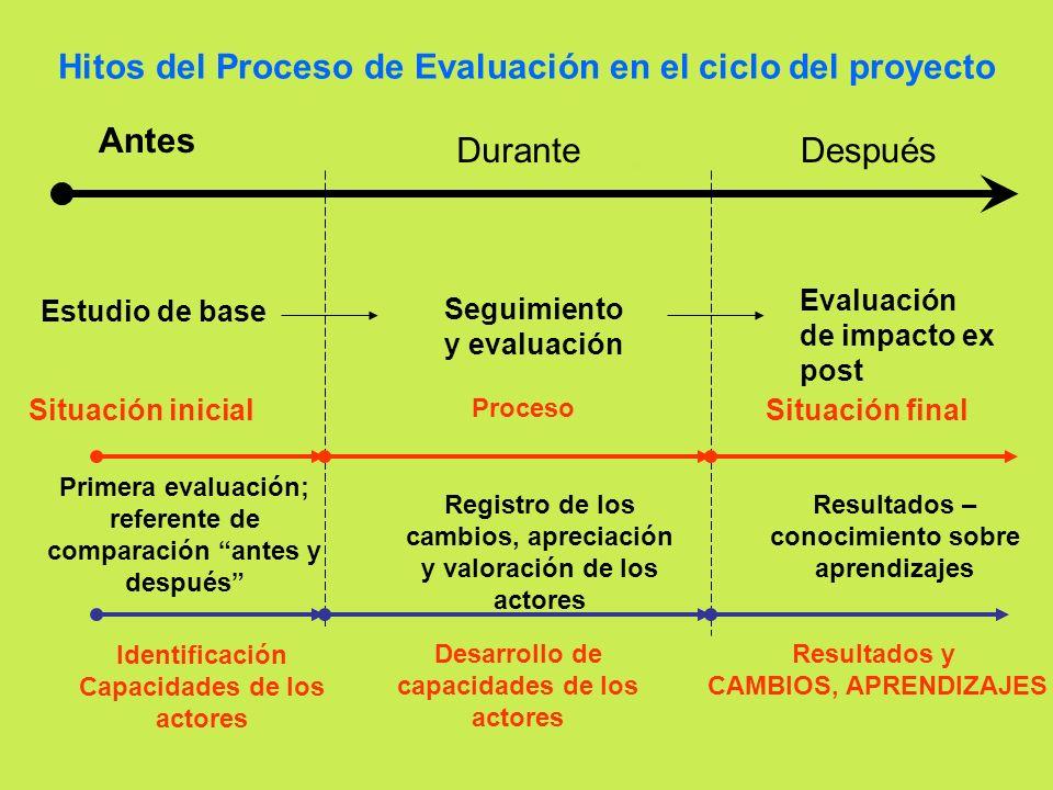 Hitos del Proceso de Evaluación en el ciclo del proyecto