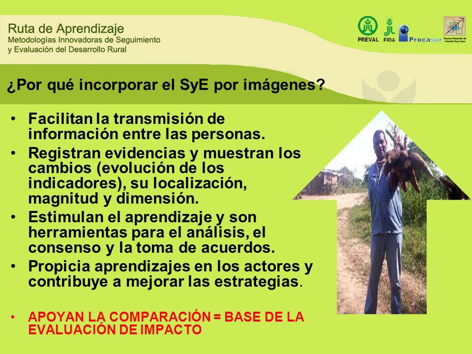¿Por qué incorporar el SyE por imágenes