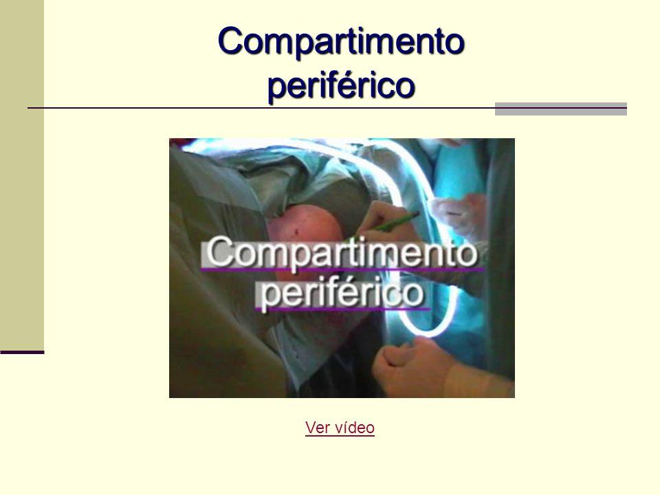 Compartimento periférico