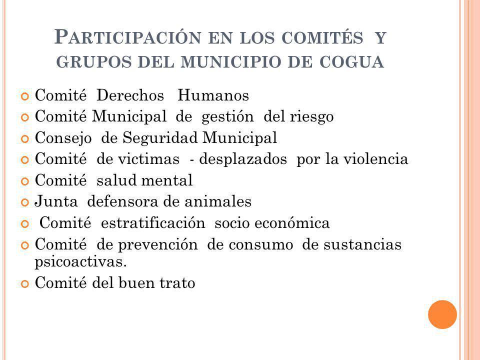 Participación en los comités y grupos del municipio de cogua