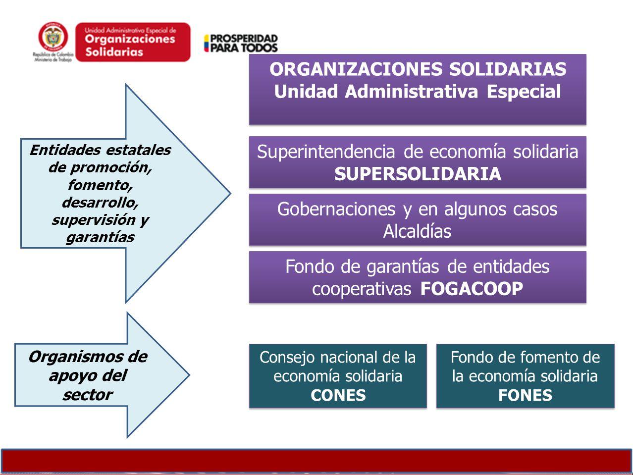 ORGANIZACIONES SOLIDARIAS Organismos de apoyo del sector