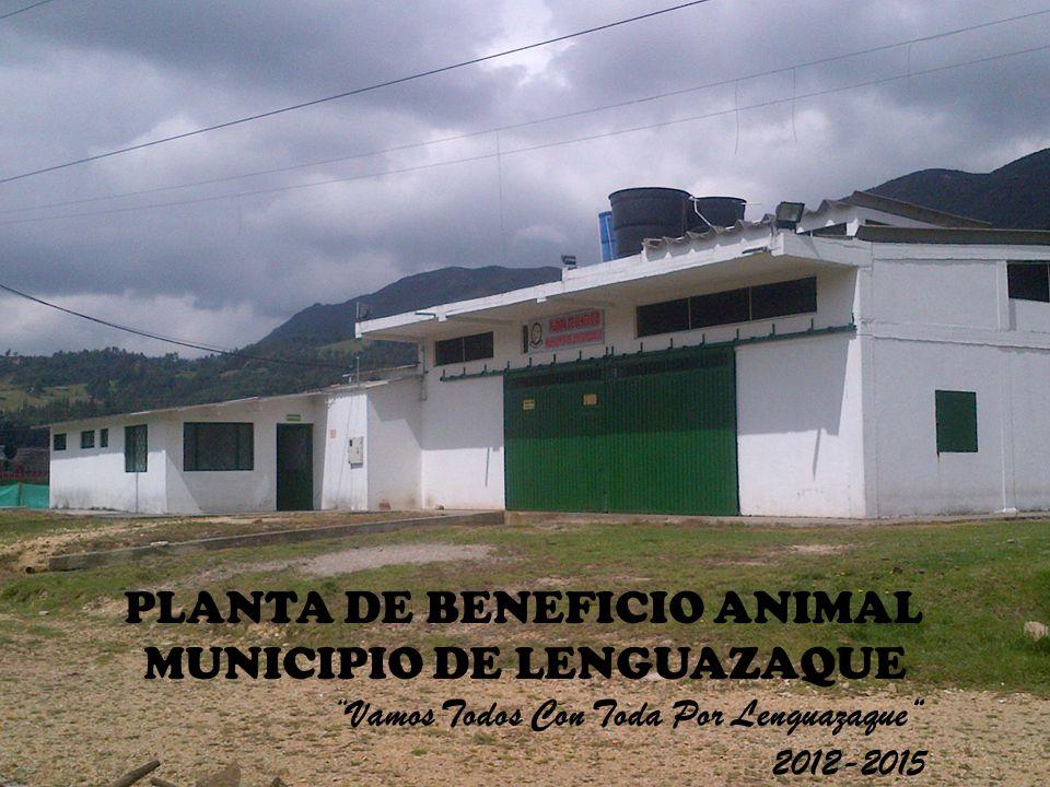 PLANTA DE BENEFICIO ANIMAL MUNICIPIO DE LENGUAZAQUE