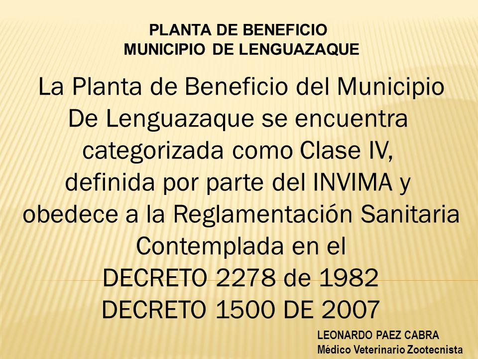 MUNICIPIO DE LENGUAZAQUE