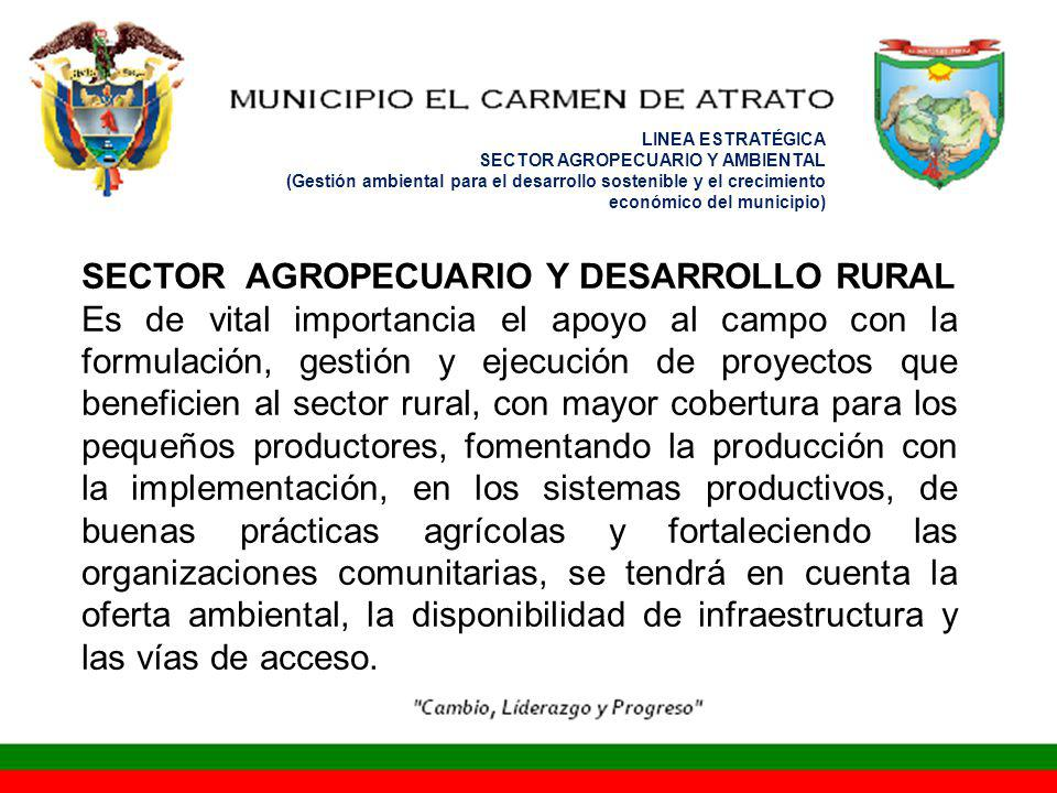 SECTOR AGROPECUARIO Y DESARROLLO RURAL