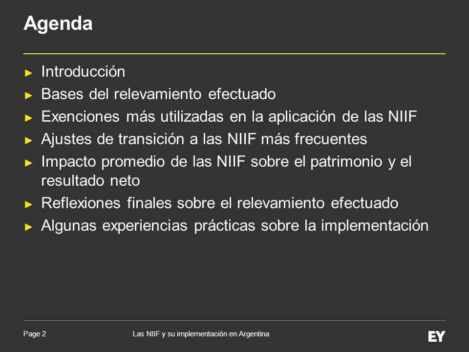 Agenda Introducción Bases del relevamiento efectuado