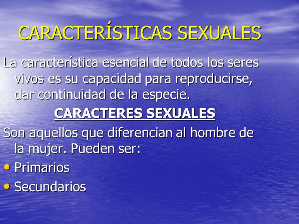 CARACTERÍSTICAS SEXUALES