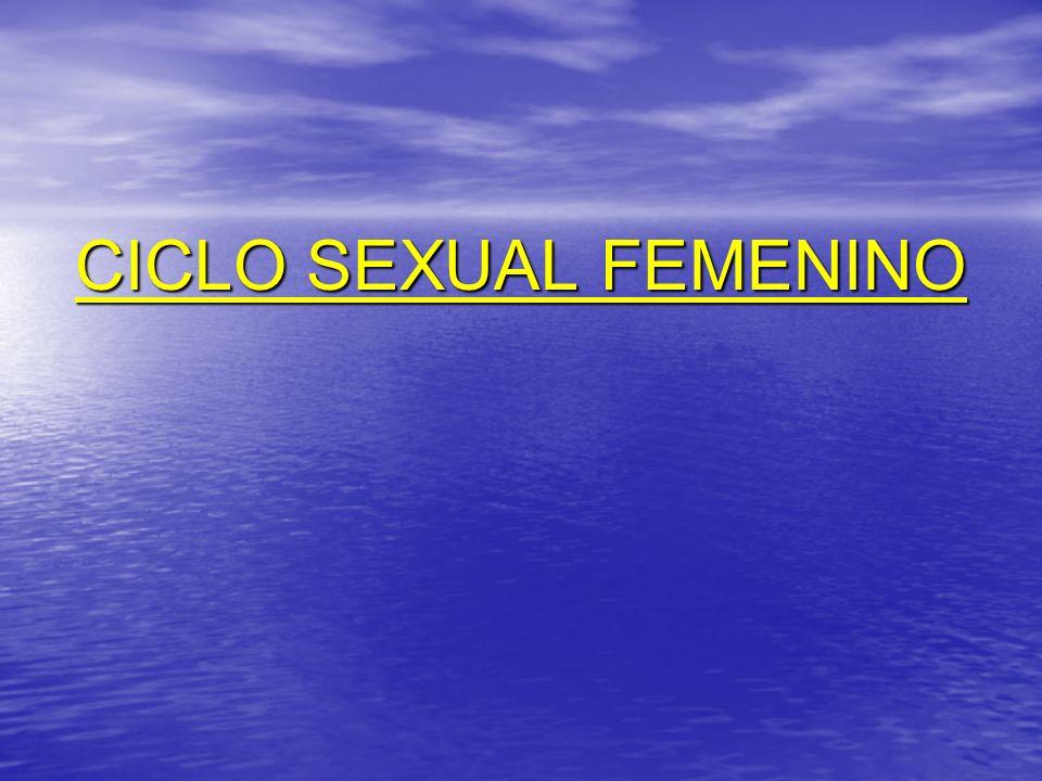 CICLO SEXUAL FEMENINO