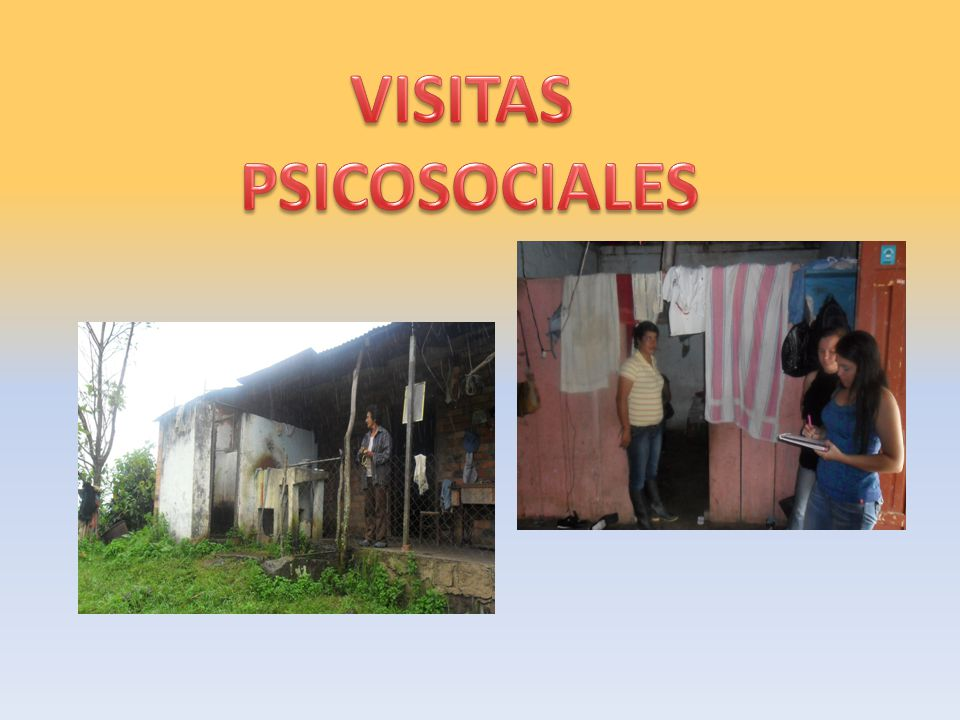 VISITAS PSICOSOCIALES