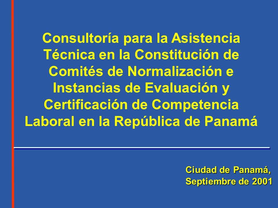 Consultoría para la Asistencia Técnica en la Constitución de Comités de Normalización e Instancias de Evaluación y Certificación de Competencia Laboral en la República de Panamá