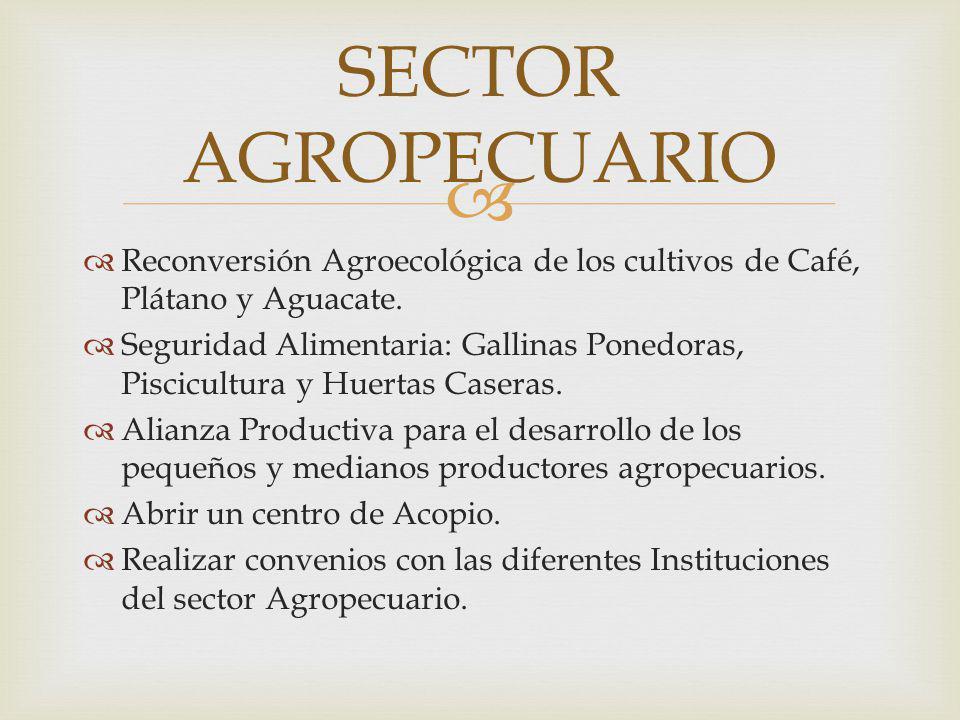 SECTOR AGROPECUARIO Reconversión Agroecológica de los cultivos de Café, Plátano y Aguacate.