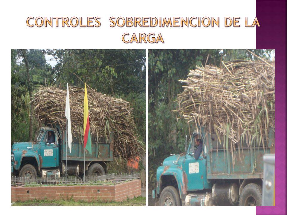CONTROLES SOBREDIMENCION DE LA CARGA