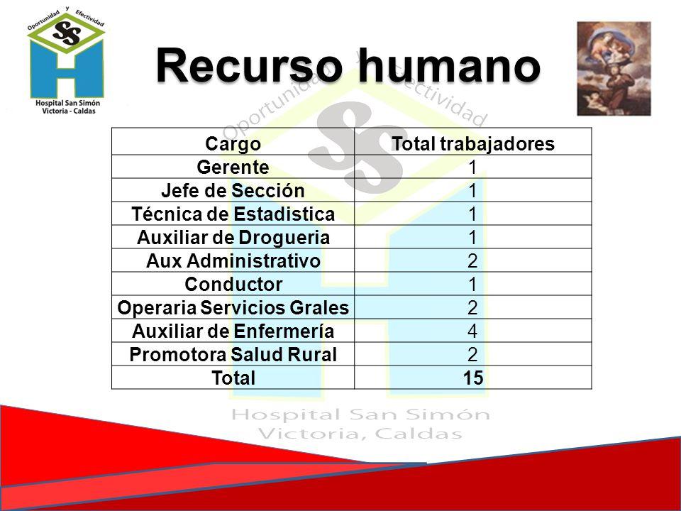 Recurso humano Cargo Total trabajadores Gerente 1 Jefe de Sección