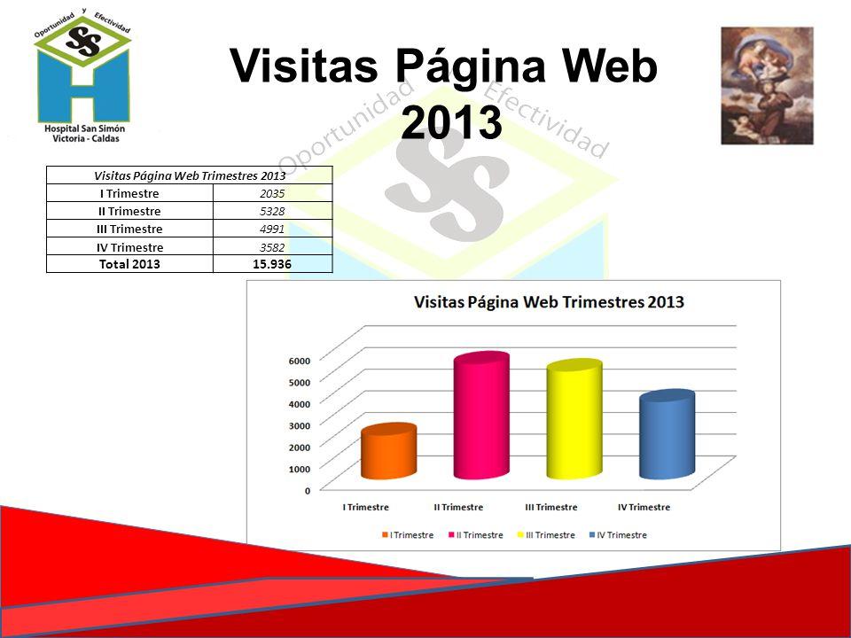 Visitas Página Web Trimestres 2013