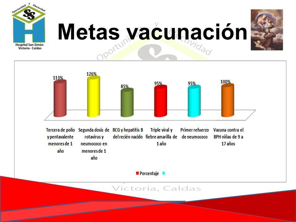 Metas vacunación
