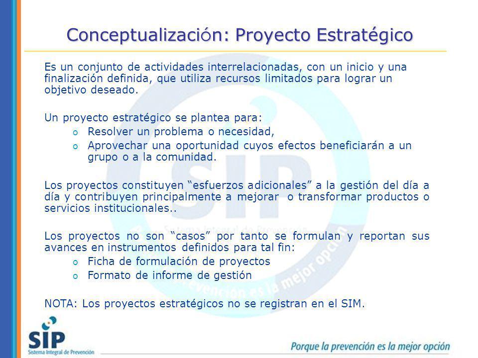 Conceptualización: Proyecto Estratégico