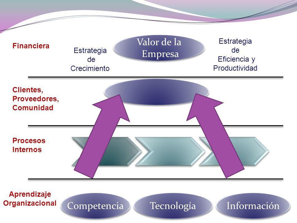 Valor de la Empresa Competencia Tecnología Información Estrategia